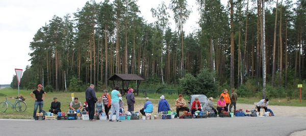 Заработать на трассе, или день с продавцами даров леса
